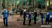 Eclipse les Cullen et le wolfpack