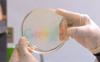 google_grow_logo_vivo
