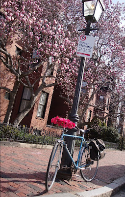 Boston bicycle flower garland springtime