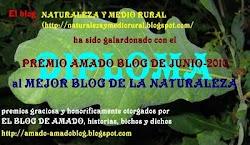PREMIO AMADO BLOG JUNIO 2010 AL BLOG MÁS NATURAL