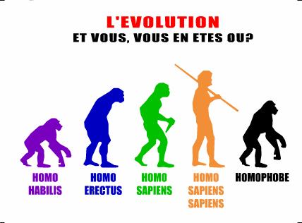 homophobe.png