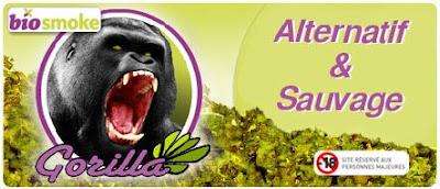 biosmoke gorilla