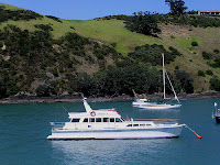 Boats at Waiheke Island NZ after Auckland Harbour Cruise