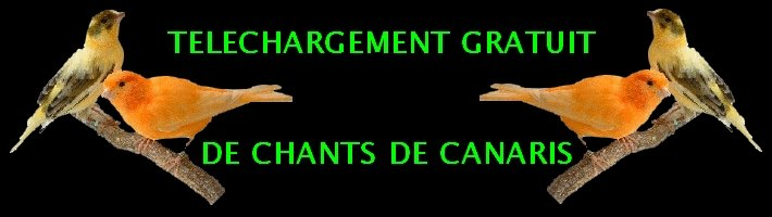 TELECHARGEMENT GRATUIT DE CHANTS DE CANARIS