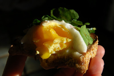 An up close look at the poached egg sandwich