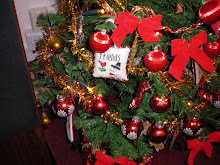 ornament sent to me by Angela 2007