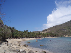LES SAINTES. Una Playa