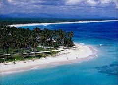 REP DOM 7 todo playa