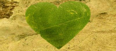 Niger Heart