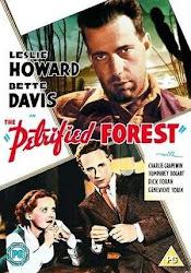 Baixar Filme A Floresta Petrificada (Legendado)