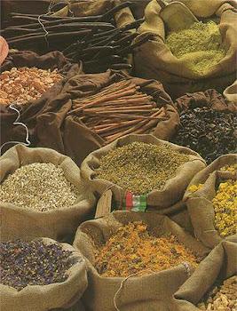 """vantagens nuticionais das sementes """"clikar foto"""""""