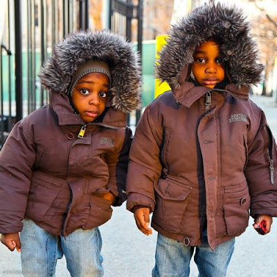 Facts About Twins