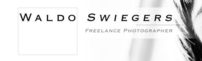 Waldo Swiegers - Online Blog Portfolio