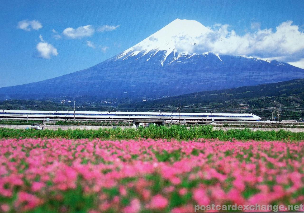Japanese natural art , Mount Fuji  our leisure