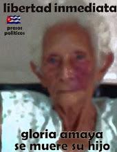 LLAMADO DE MADRE CUBANA