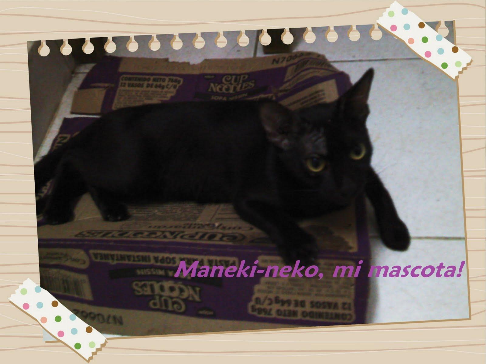 Maneki-neko, mi mascota!