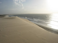 ジェリコアコアラビーチ