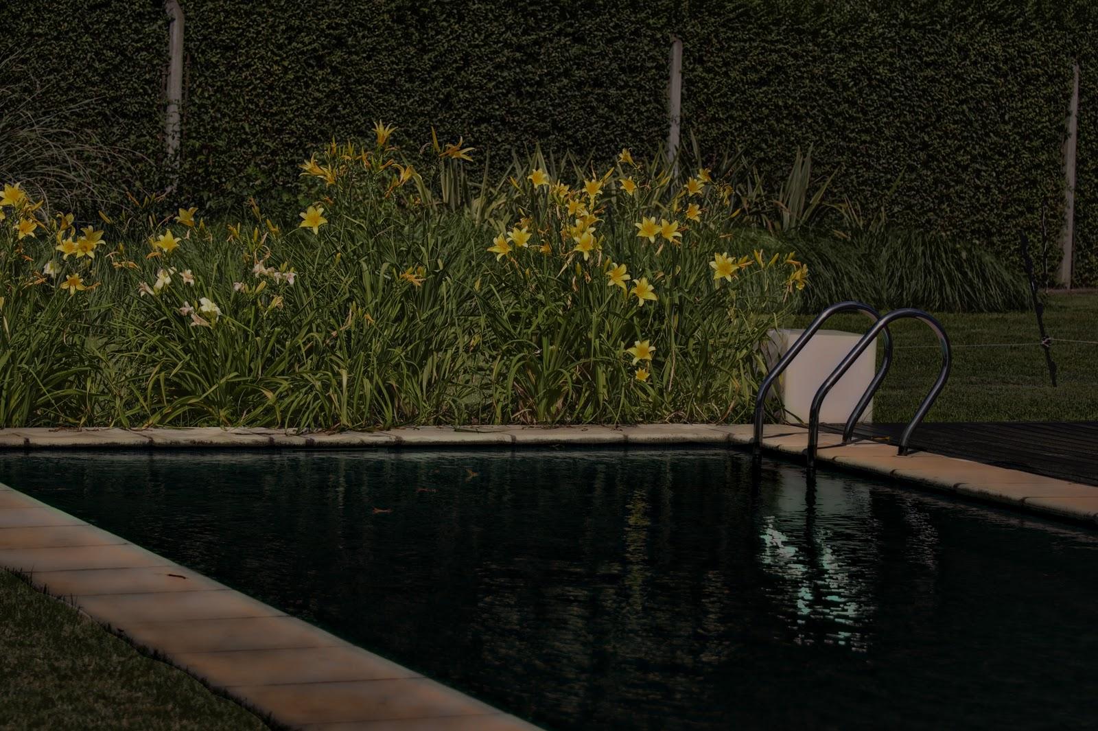 Jardines y paisajismo - Jardines y paisajismo ...
