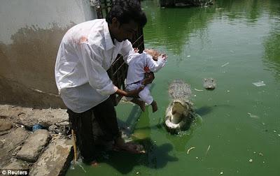 Debotos de Mela Sheedi usan a niño como ofrenda para cocodrilos Sheedi1
