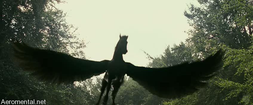 Пегас лошадь с крыльями фото 3