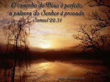 Samuel 22.31