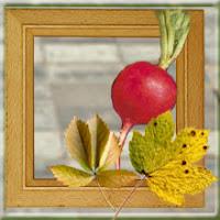 Осенний редис