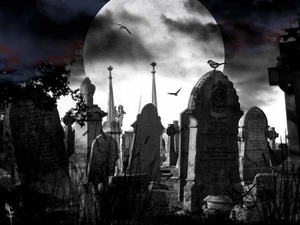 Te imaginas lo bueno Si moririas en 2 dias?(10 Razones)
