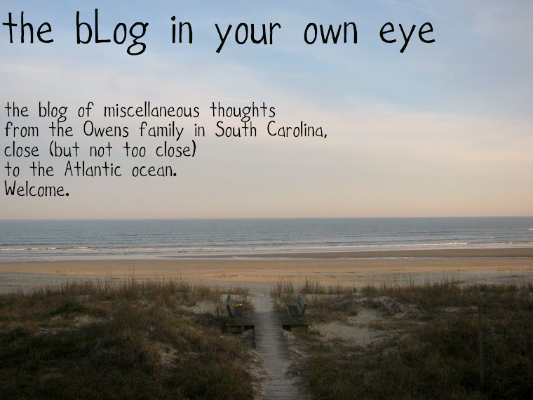 The bLog in Your Own Eye