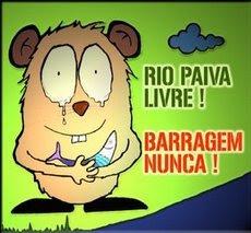O RIO PAIVA É UM PATRIMÓNIO NATURAL A PRESERVAR