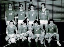 Pioneiros no Voleibol