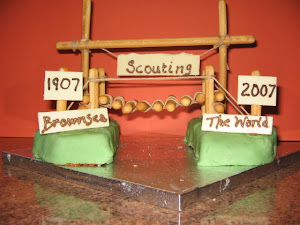 Here's a cake made by Ross Aztec Cubs to celebrate one hundred years of Scouting.