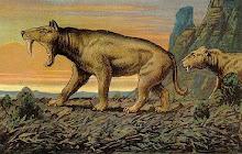 Wissenschaftsautor Ernst Probst schreibt über Urzeiten