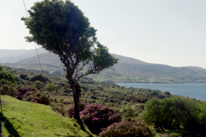 Connemara region, Ireland