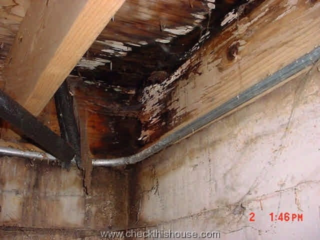Bathroom Floor Joist Spacing : The white rockers august