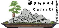 霹靂盆栽雅石協會