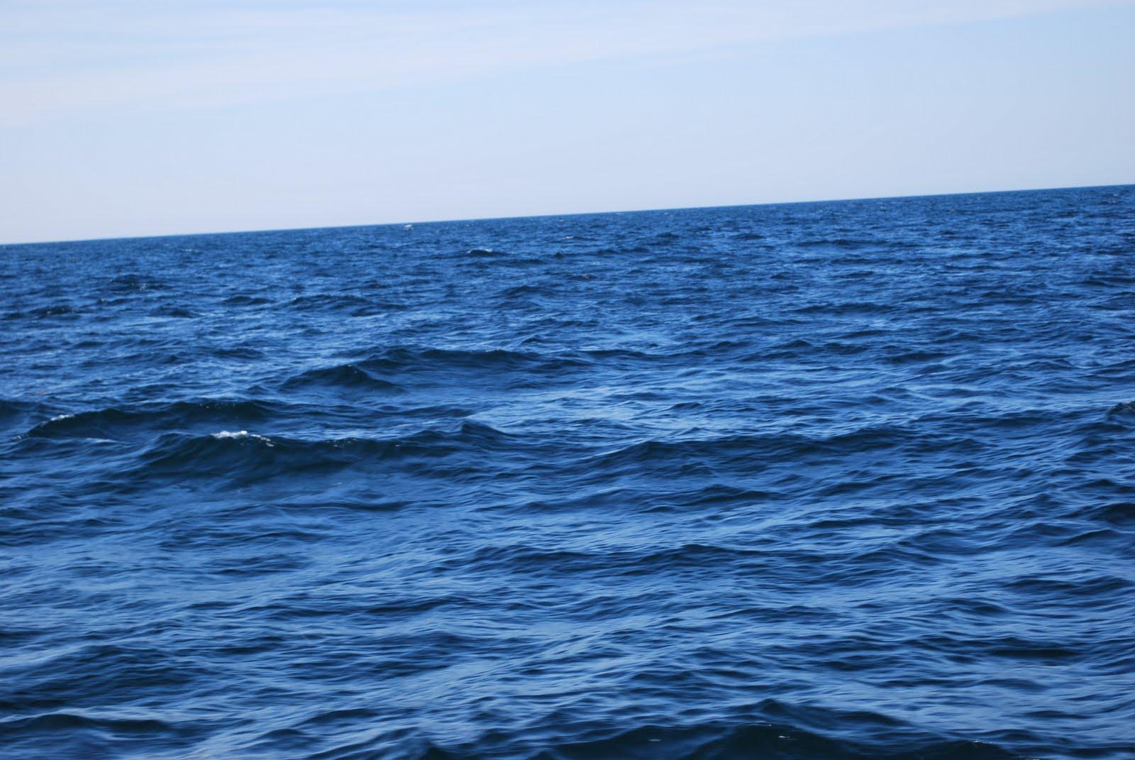 Longacre photography deep sea fishing in maine for Deep sea fishing in maine