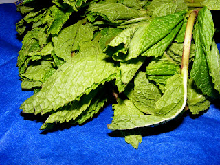 Mint Chutney (Weekend Herb Blogging)