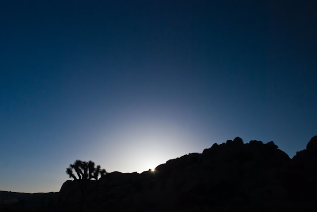 SWTphoto 11+lr Joshua Tree National Monument