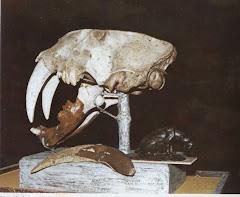 Smilodon (Tigre Dientes de Sable)