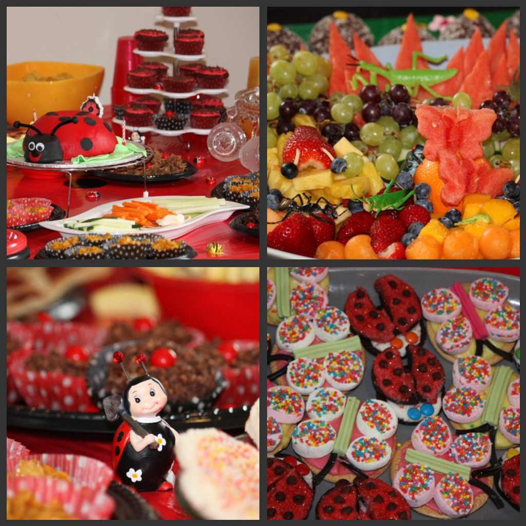 Download this Ladybird Party Food... picture