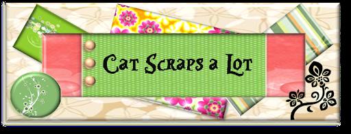 Cat Scraps a Lot