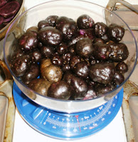Small Purple Rocks - Peruvian Purple Potatoes