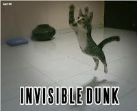 Dunk Cat