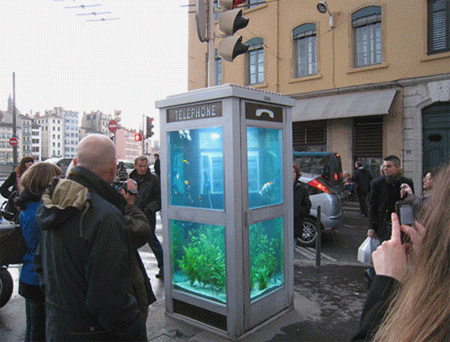 aquarium-phone-booth.jpg (450×342)