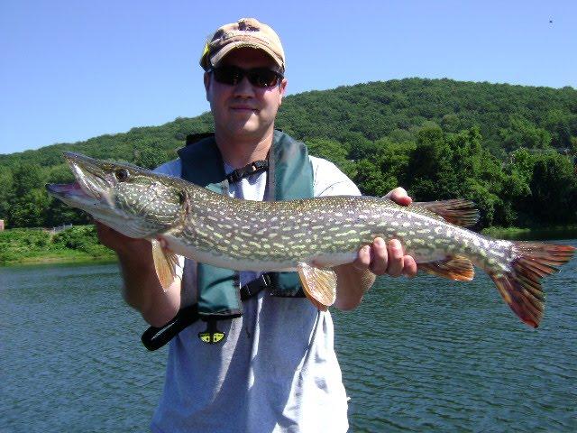 Outdoors insider by deborah weisberg fishing report for Erie fishing report poor richard s