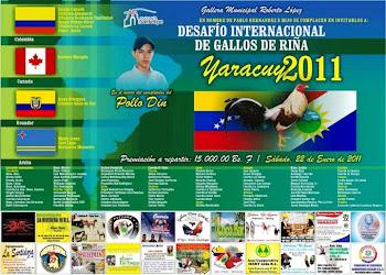 DESAFIO INTERNACIONAL DE RIÑAS DE GALLOS YARACUY 2.011