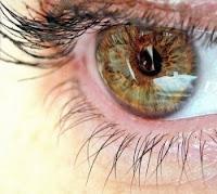 العين ترى كل شئ إلا ذاتها