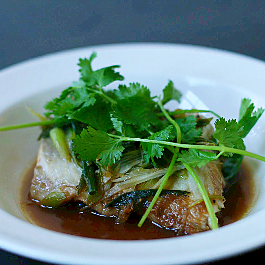 Steamed Cod with Ginger, Lime, Scallions and Cilantro: The motivation ...