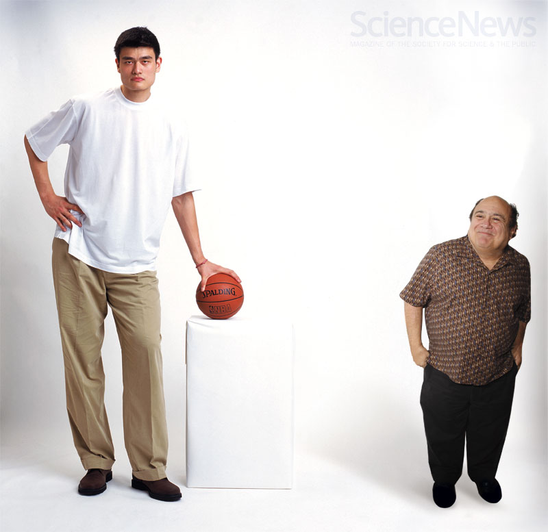 Height growth hormone food