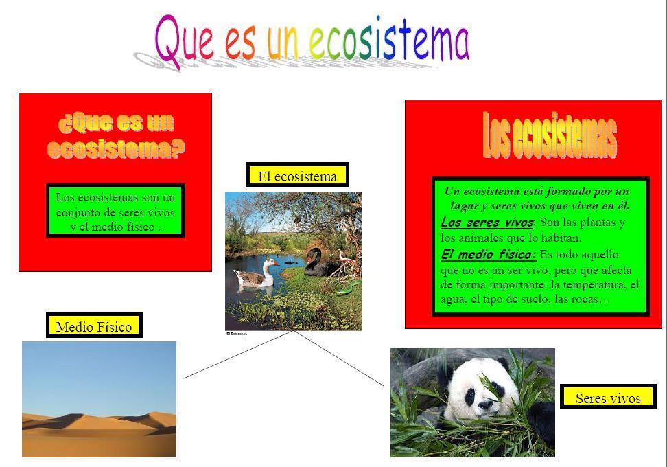 Cosas del entorno para 4 b esquema sobre los ecosistemas for Que es un vivero frutal